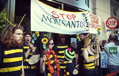 Buzz Off, Monsanto