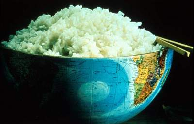 Let Them Eat Rice