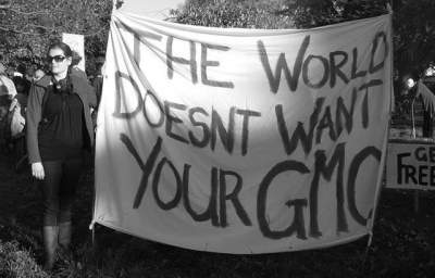 Grassroots Campaign Monsanto Video Revolt Brings Fight Against Monsanto Online July 24th