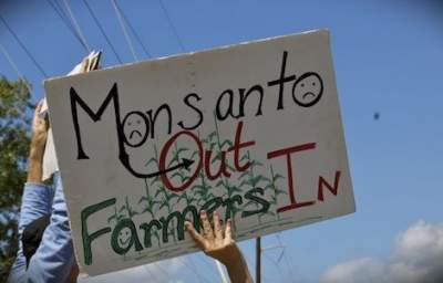 Appeals Court Makes Monsanto Promise Not to Sue Organic Farmers