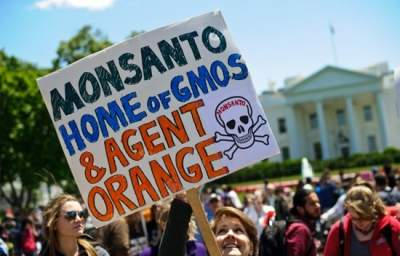 Court of Appeals Sides with Monsanto Over Organic Farmers