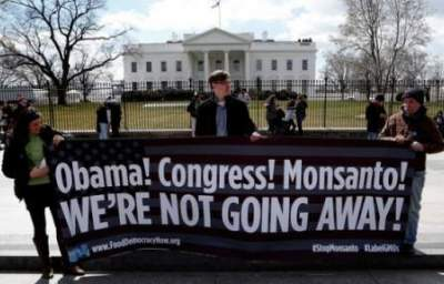Genetically Modified Democracy: Monsanto and Congress Move to Stomp on States' Rights