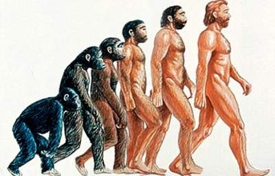 Survival of the ... Nicest? Check Out the Other Theory of Evolution