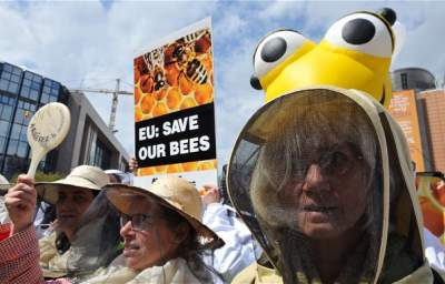 U.S. Approves Bee Death Pesticide as E.U. Bans It