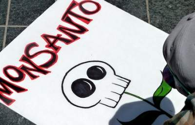 African Center for Biosafety Orders Monsanto to Stop Making False Claims about GMOs