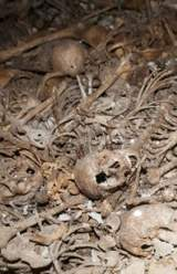 Palestinian Victims From War of 1948 Found in Mass Grave