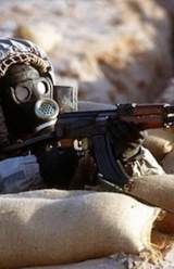 Syria Chemical Weapons 'Could Go in a Month'