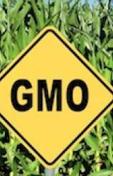 Vermont to Require GMO Labeling
