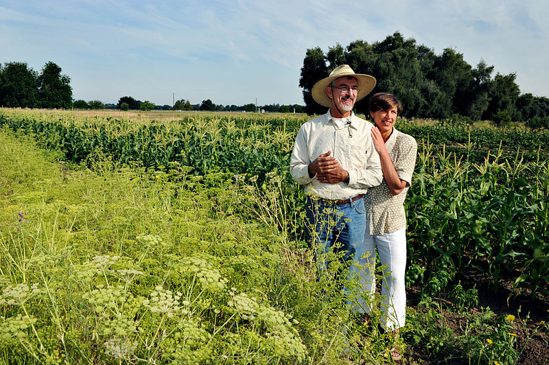organic farms help communities